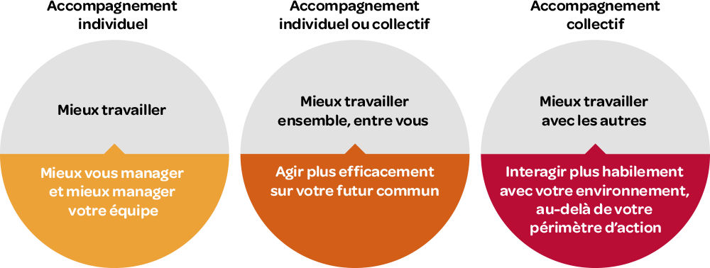 Schema Accompagnement individuel ou collectif